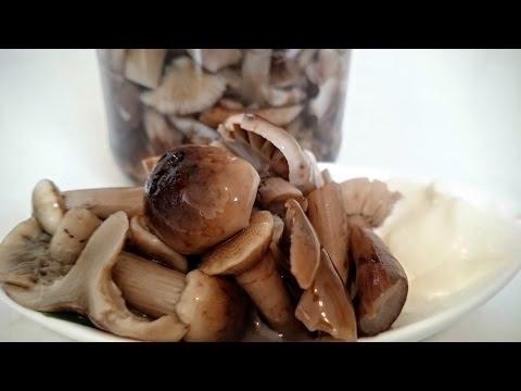 Опята маринованные грибы - Заготовки на зиму Рецепт как мариновать грибы опята вкусная закуска