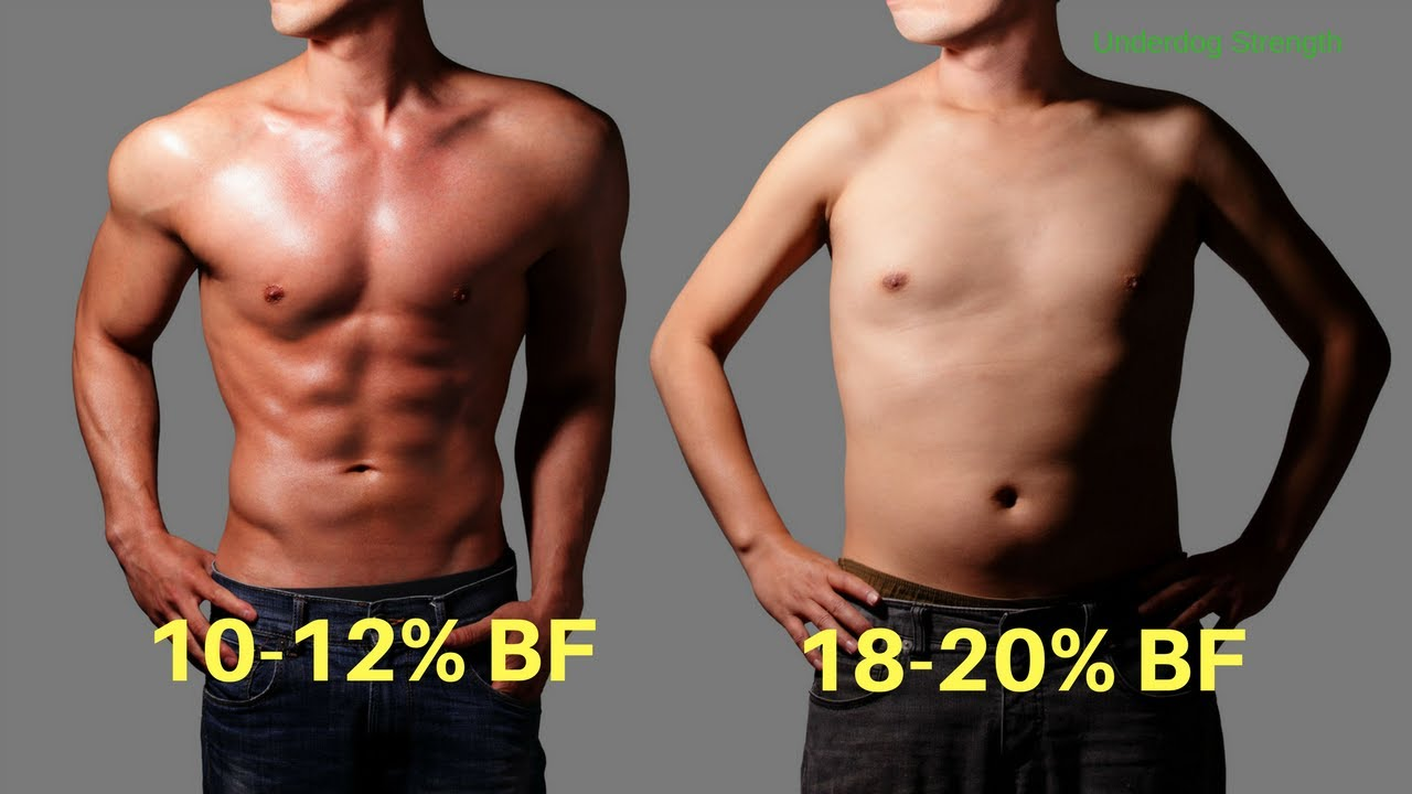 Image result for fat vs muscle