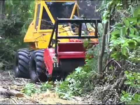 Geo-Boy: In Action - Land Clearing