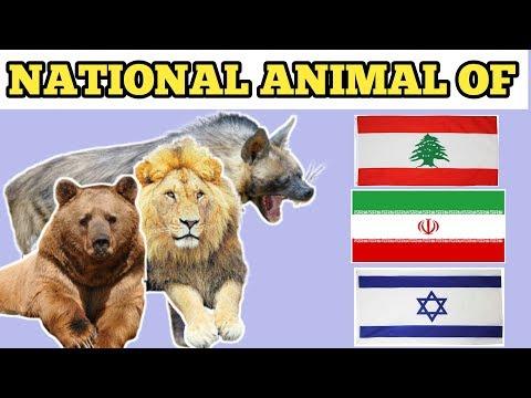 Israel, Oman, Syria, Lebanon, Iran Countries National Animal | National Animal Of Countries