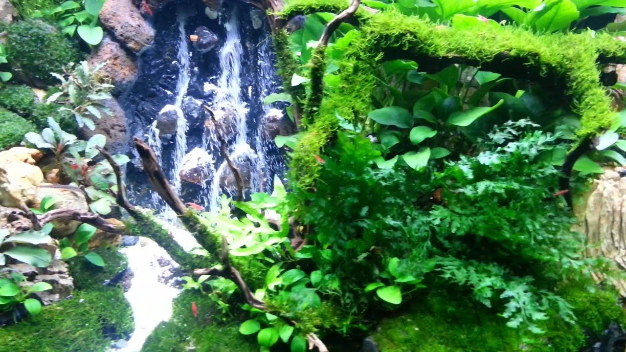 Mark Aquascape waterfalls 2014 - YouTube