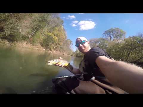 Brown Trout Fly Fishing On The Elk River TN