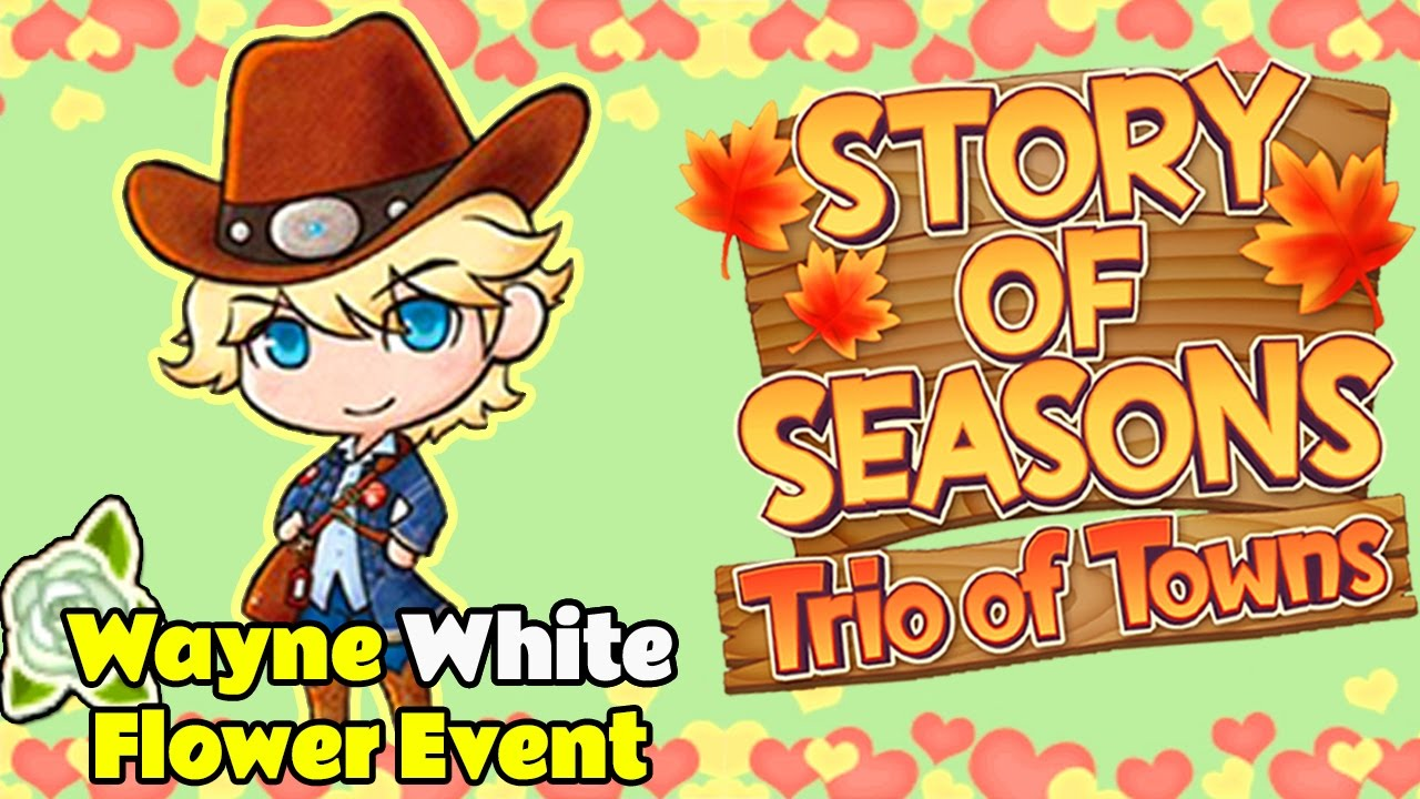 story of seasons trio of towns tipps