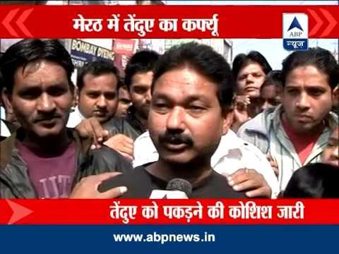 Leopard scare in UP: Meerut shutdown