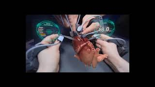 The Good Doctor: Testing Surgery Scenarios thumbnail