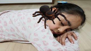 Örümceklerden Kaçıyorum Mucize Uğur Böceği العنكبوت لدغ