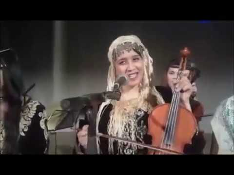 العائلات الشلفية تتجاوب مع الأغنية الأندلسية والشعبية بدار الثقافة