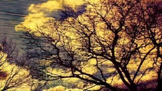 pantha du prince   bohemian forest original mix