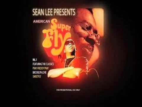 Jay-Z Say Hello (Superfly Remix - Sean Lee)