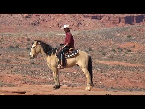West Coast America - 15 Day Western Discovery Tour - ATI Tours