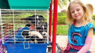 Stacy ha creado un zoológico casero