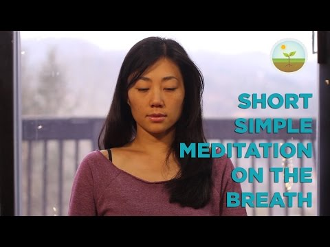 Guided Mindfulness Meditation on the Breath
