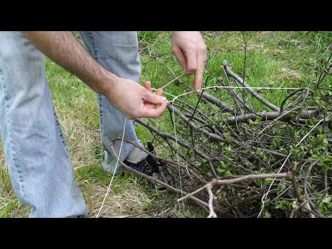 How to bundle branches with string