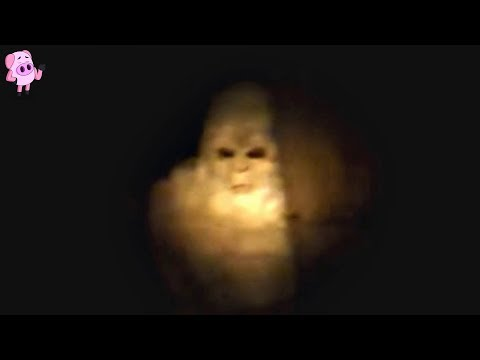 7 REAL Bigfoot Sightings That Will Make You a Believer!