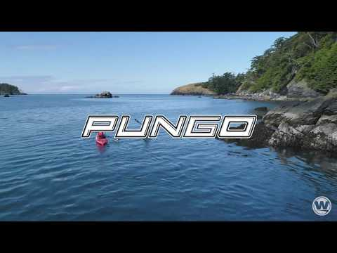 Wilderness Systems   The 2019 Pungo is Paddling Perfected.