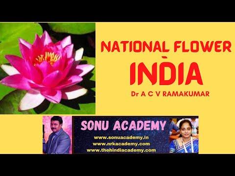 National Flower Youtube