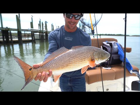 Charleston Inshore Fishing, Redfish, Seatrout And Flounder Video