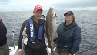 Jigging for Cod, Centreville Newfoundland Part 4 of 4