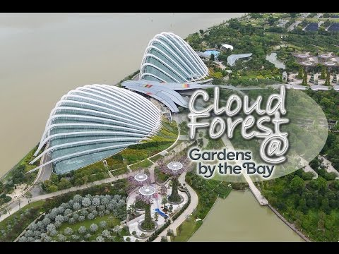 Cloud Forest @ Gardens by the Bay | Singapore