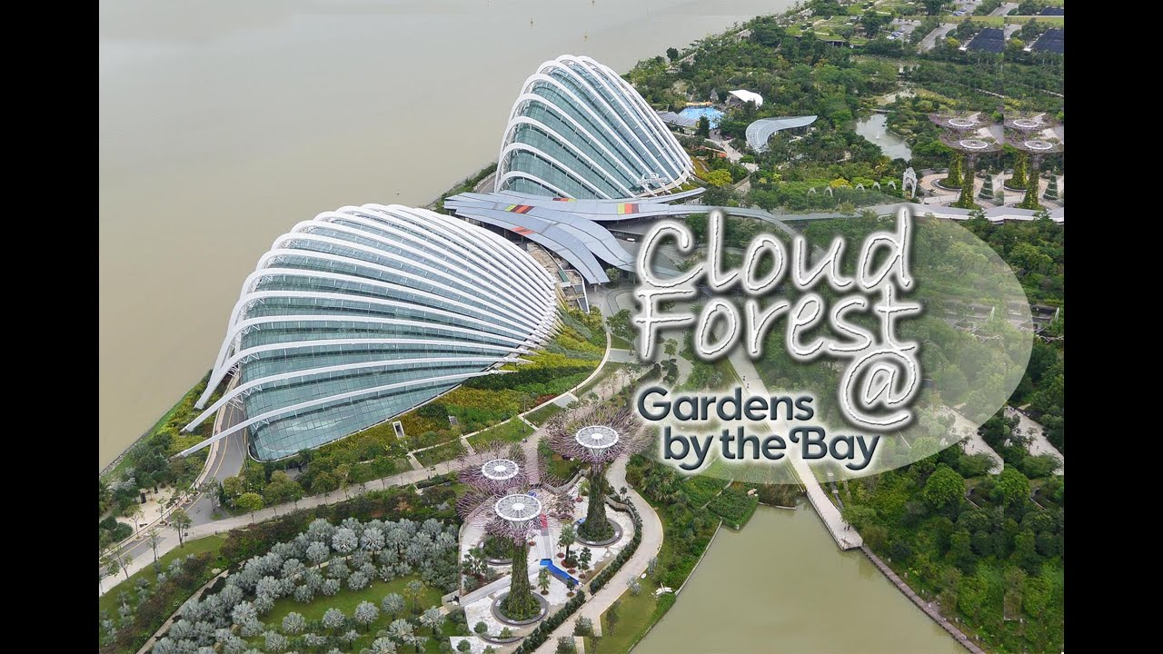 Cloud Forest Gardens By The Bay Singapore Youtube