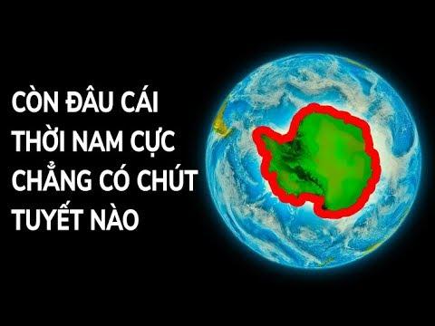 Nam Cực Đã Từng Có Khí Hậu Nhiệt Đới