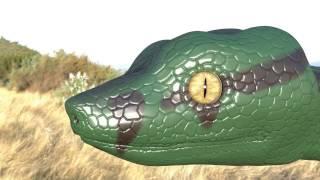 SnakeTf