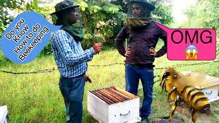 Beekeeping (मधुमक्खी पालन)