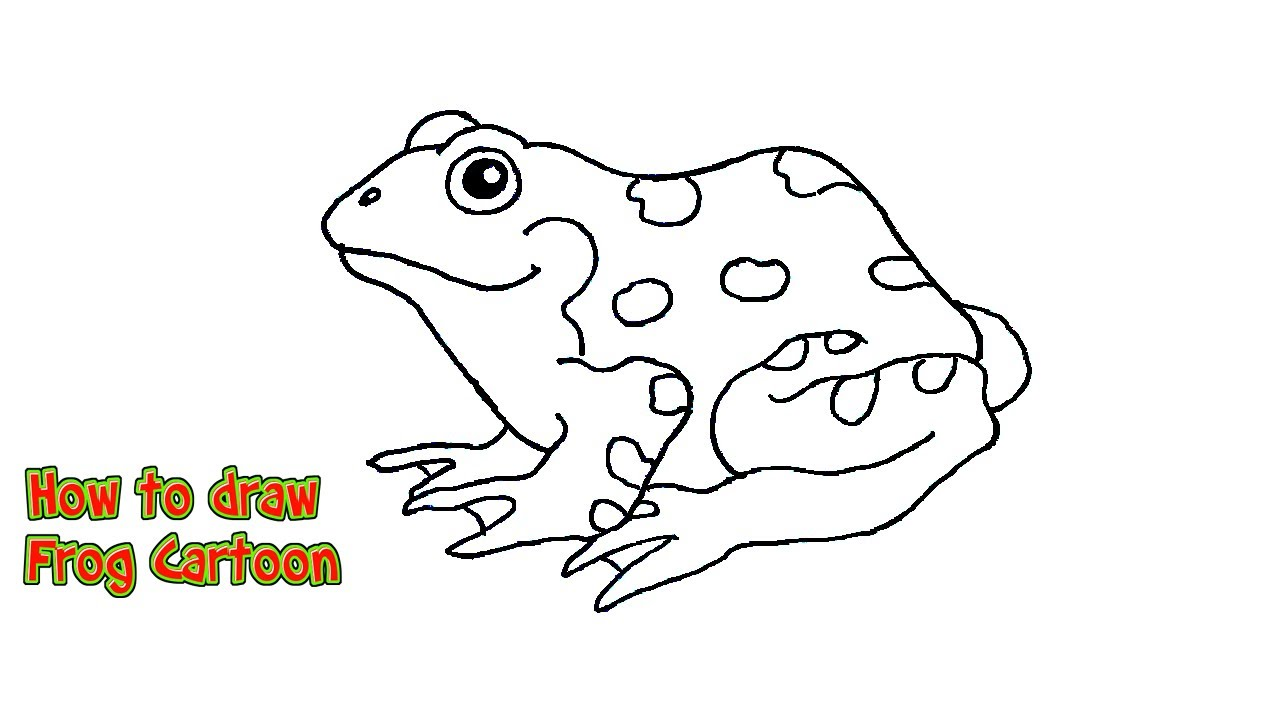 How to draw a frog cartoon   Frog directed drawing - YouTube