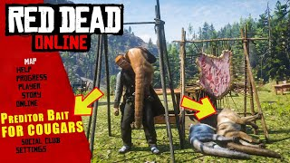 HOW TO USE PREDATOR BAIT AND SPAWN COUGARS IN RED DEAD ONLINE
