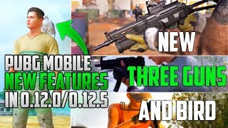 3 New Guns,Canted Sight and PET in Pubg Mobile Update 0.12.5 ?