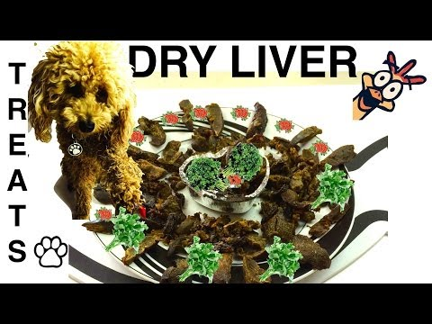 How To Make CHICKEN LIVER DRY DOG TREATS DIY Dog Food Tutorial By Cooking For Dogs