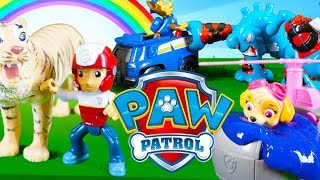 Paw Patrol Color Learning Video Full Episode in English - Learning Colours