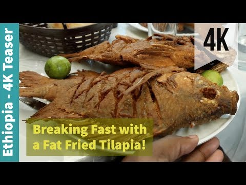Breaking Fast with a Fat Fried Tilapia! | Minute Meal | Addis Ababa, Ethiopia | 4K Teaser