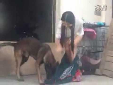 con chó mất dại và cô chủ xinh đẹp