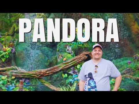 Pandora (World of Avatar) at Park Opening | June 2017 Walt Disney World Vacation