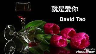 Jiu Shi Ai Ni - David Tao - Inti Terjemahan & Lirik - 就是爱你