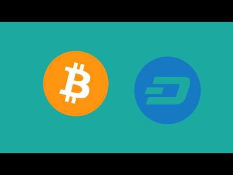 We Didn't Clog The Blockchain! A Funny, Nostalgic Crypto Video.