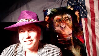 Pimp Daddy School District Monkeys