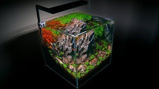 SETTING UP A SMALL AQUARIUM - …