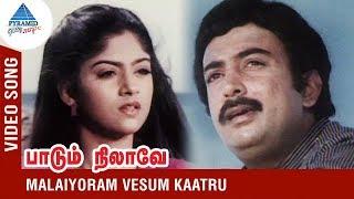 SPB Song   Malaiyoram Vesum Kathu Video Song   Paadu Nilave Tamil Movie   SPB   Mohan   Nadhiya