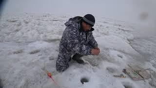 Вспомнил зимнюю рыбалку на окуня