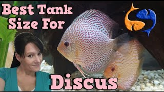 whats the best tank size for discus talkin discus presented by kgtropicals