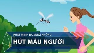 Phát minh ra muỗi không hút máu người | VTC1