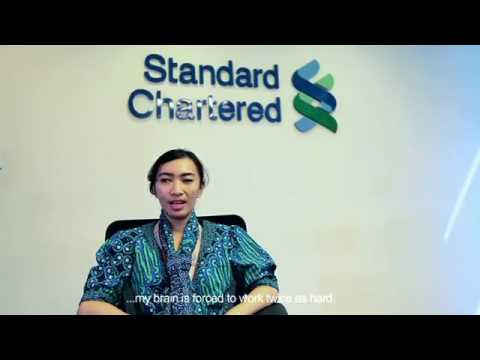 ICEVI The Nippon Foundation Higher Education Employment Video   Indonesia