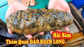Gambar cover Thăm Quan Đảo Bạch Long Vĩ - Xem Con Hải Sâm #131