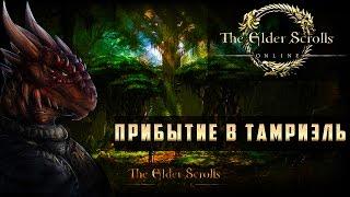 Прохождение The Elder Scrolls Online (TES Online) - Прибытие в Тамриэль #1