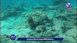 เผยภาพปะการังอ่าวมาหยาที่ได้รับความเสียหาย