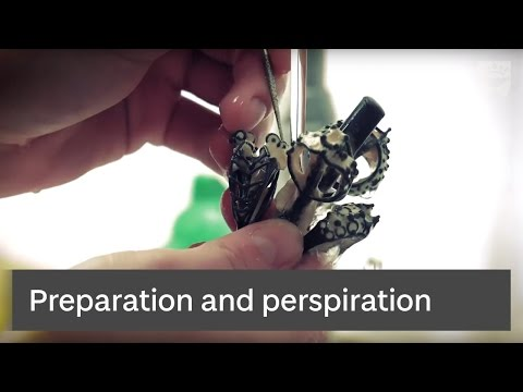 University of Dundee Art, Design & Architecture Degree Show: Preparation