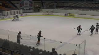Хоккей ЛНХЛ Антикор-Парма 21.11.2-17 г. 2 пер. Пермь