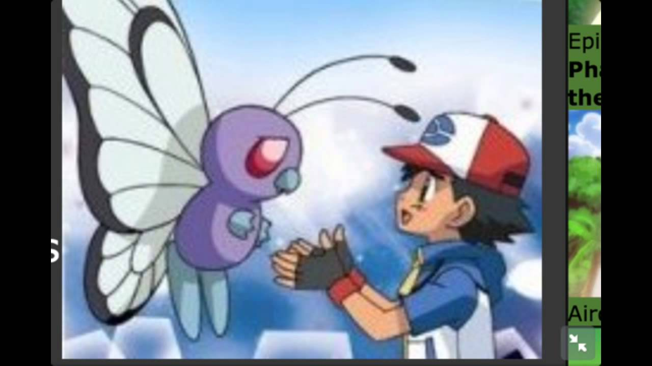 ash and butterfree meet again